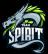 536px-Team_Spirit_2016
