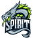 536px-Team_Spirit_2016.png